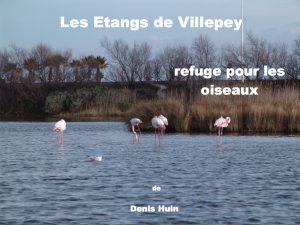 villepey-un-refuge-pour-les-oiseaux-debut-001